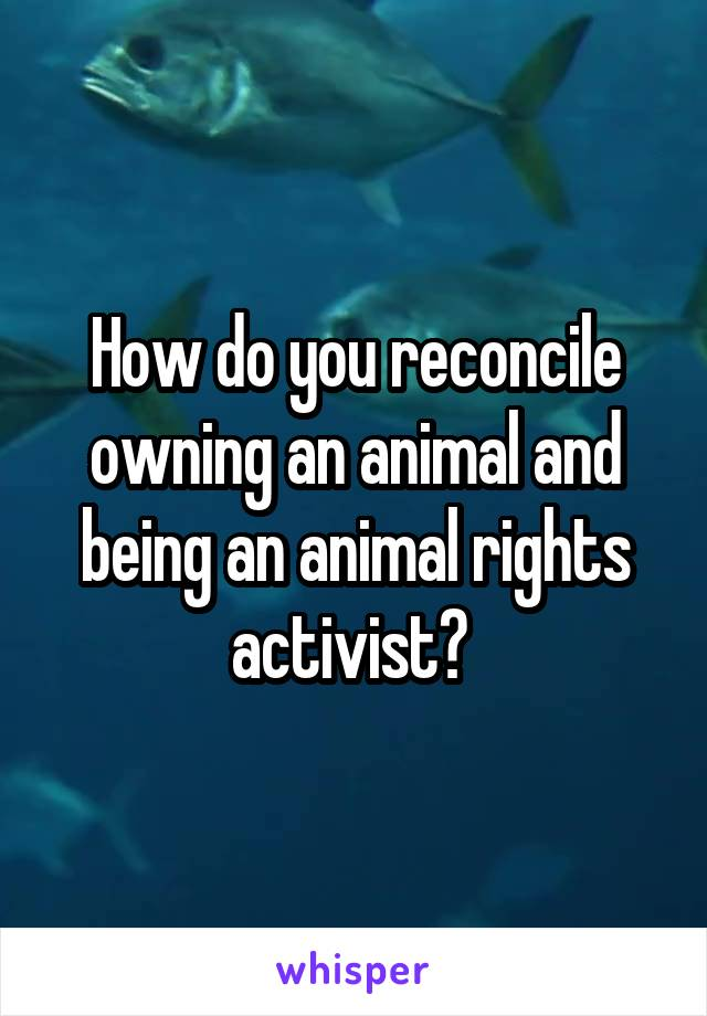 How do you reconcile owning an animal and being an animal rights activist?