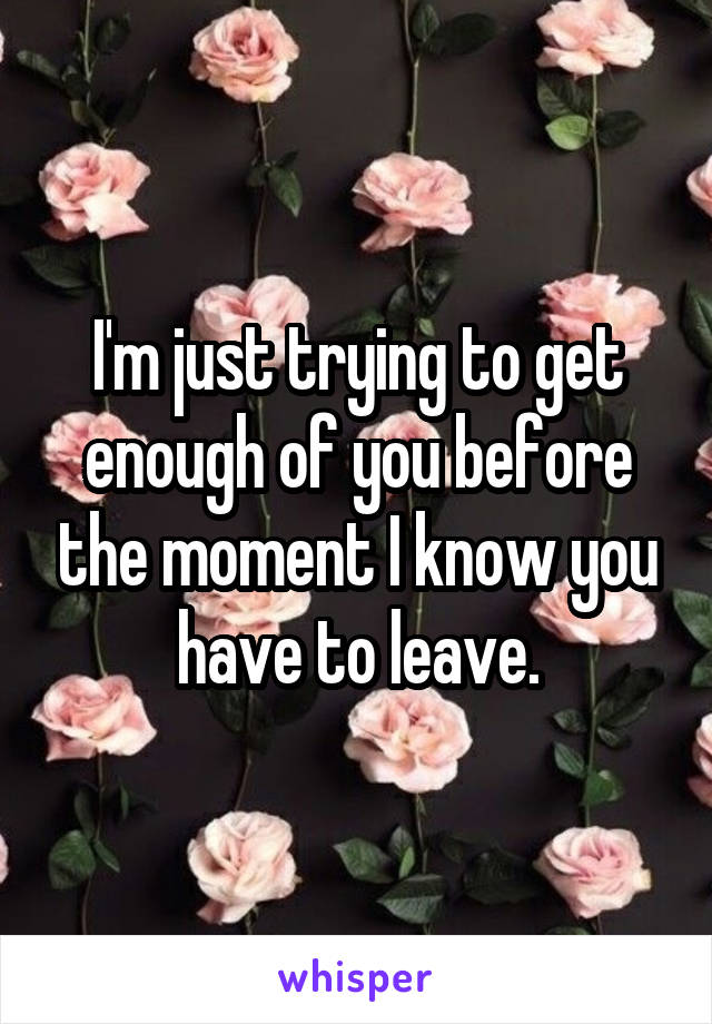 I'm just trying to get enough of you before the moment I know you have to leave.