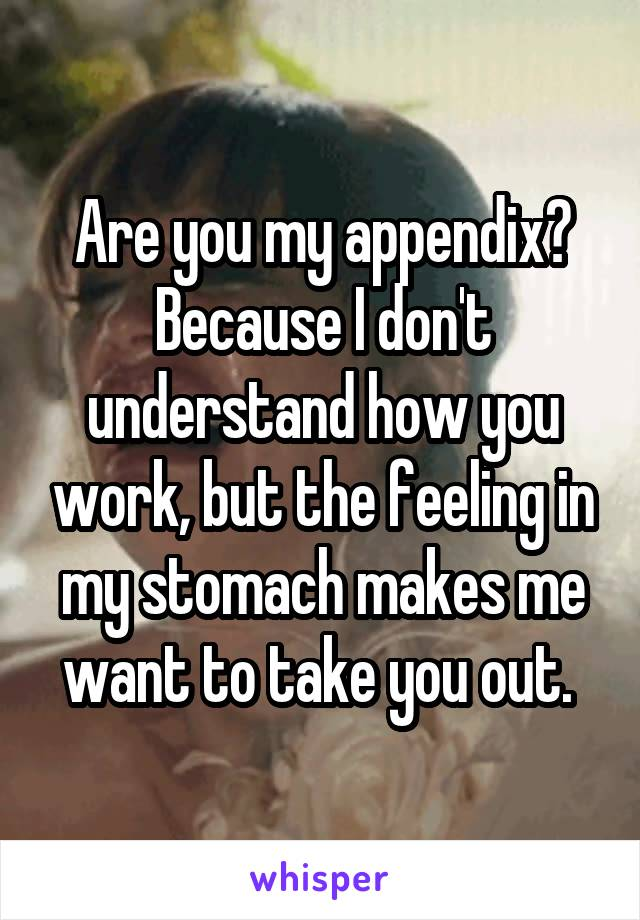Are you my appendix? Because I don't understand how you work, but the feeling in my stomach makes me want to take you out.