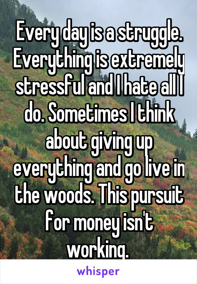 Every day is a struggle. Everything is extremely stressful and I hate all I do. Sometimes I think about giving up everything and go live in the woods. This pursuit for money isn't working.