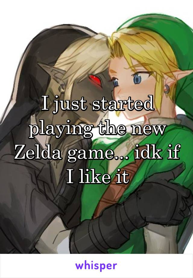 I just started playing the new Zelda game... idk if I like it