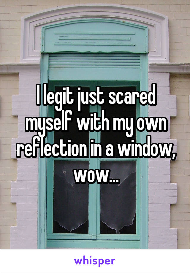 I legit just scared myself with my own reflection in a window, wow...
