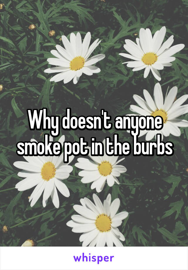 Why doesn't anyone smoke pot in the burbs