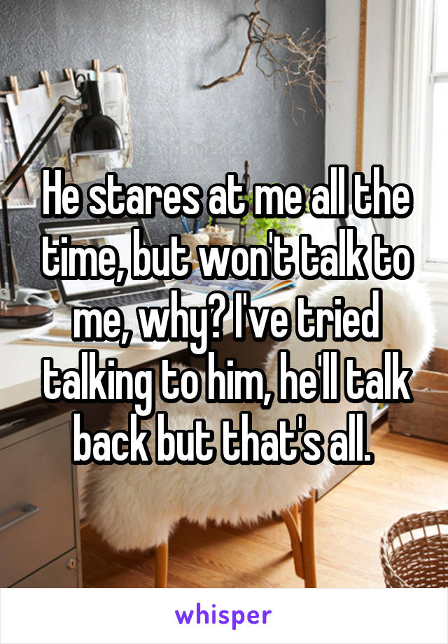 He stares at me all the time, but won't talk to me, why? I've tried talking to him, he'll talk back but that's all.