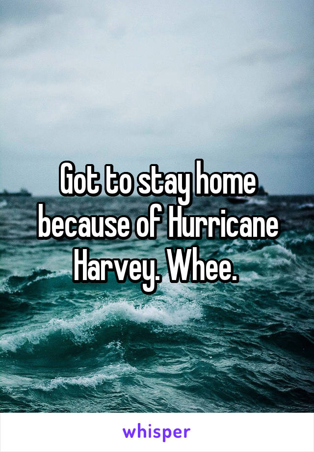 Got to stay home because of Hurricane Harvey. Whee.