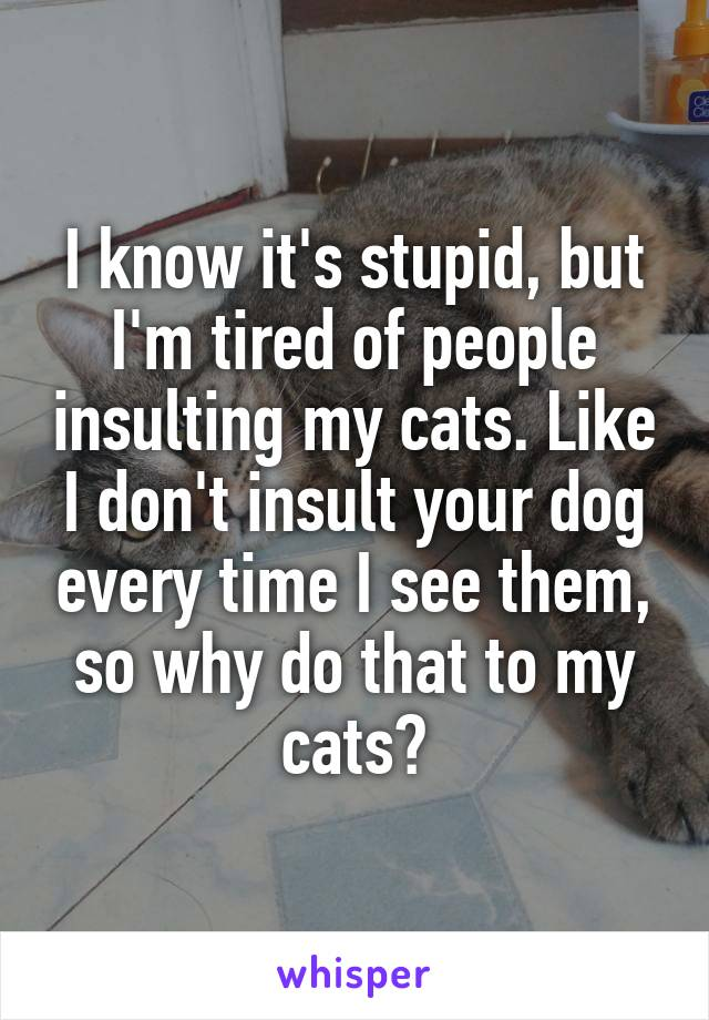 I know it's stupid, but I'm tired of people insulting my cats. Like I don't insult your dog every time I see them, so why do that to my cats?