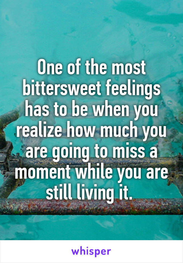 One of the most bittersweet feelings has to be when you realize how much you are going to miss a moment while you are still living it.