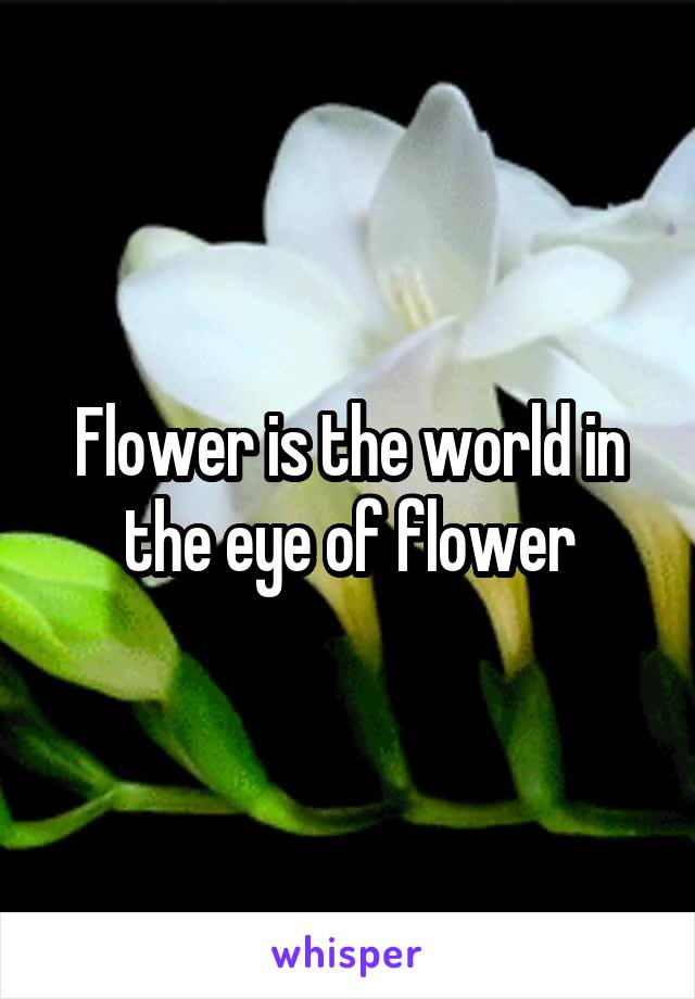Flower is the world in the eye of flower