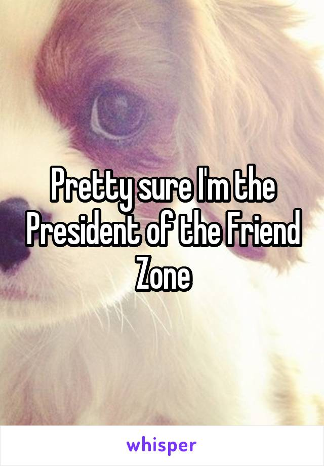 Pretty sure I'm the President of the Friend Zone