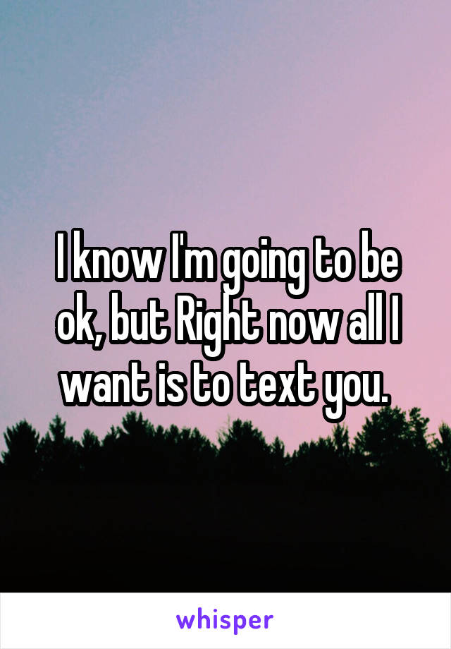 I know I'm going to be ok, but Right now all I want is to text you.