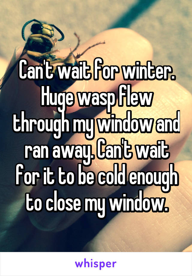 Can't wait for winter. Huge wasp flew through my window and ran away. Can't wait for it to be cold enough to close my window.