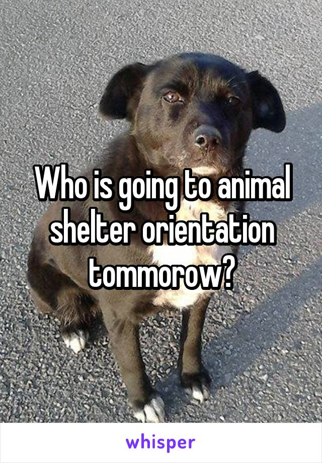 Who is going to animal shelter orientation tommorow?