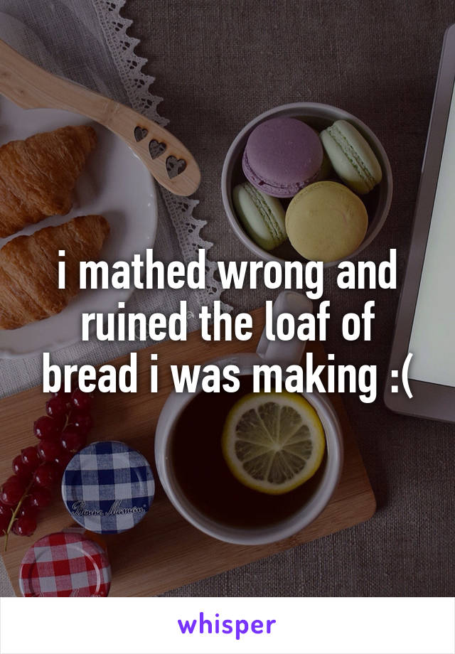 i mathed wrong and ruined the loaf of bread i was making :(