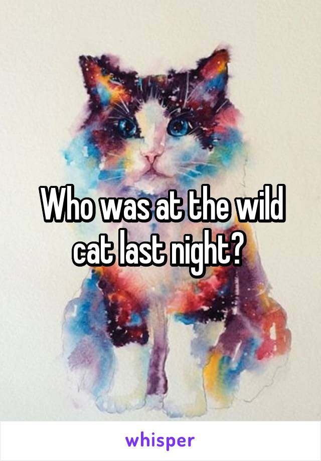 Who was at the wild cat last night?