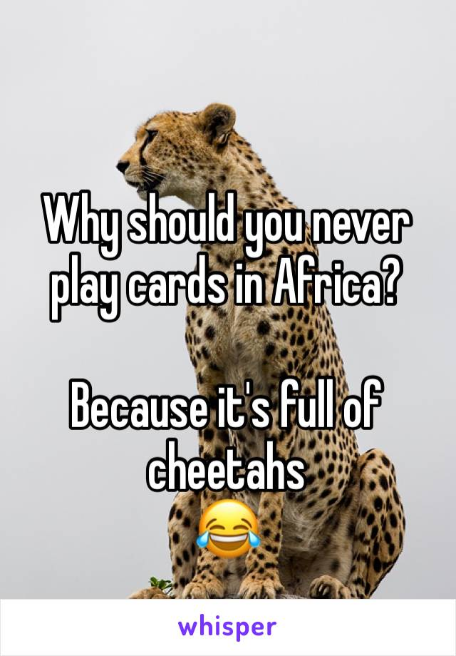 Why should you never play cards in Africa?   Because it's full of cheetahs 😂