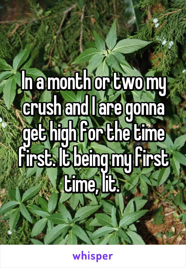 In a month or two my crush and I are gonna get high for the time first. It being my first time, lit.