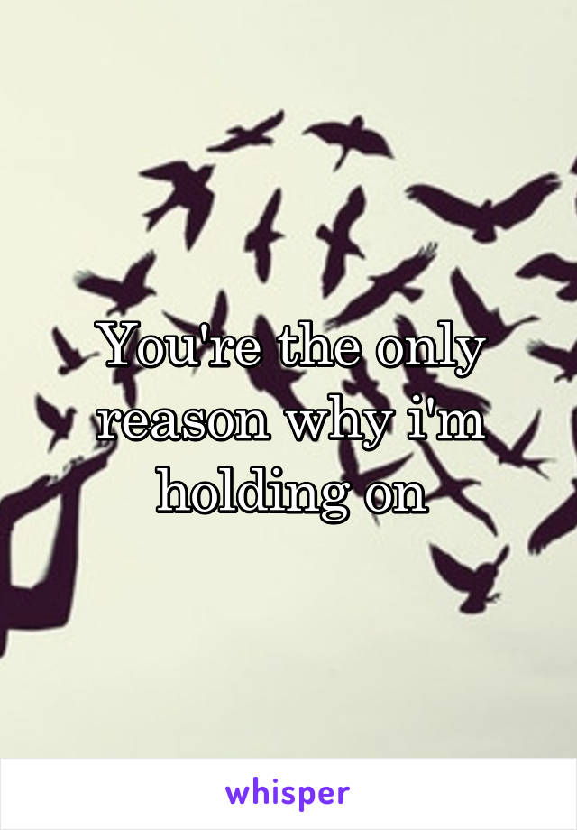 You're the only reason why i'm holding on