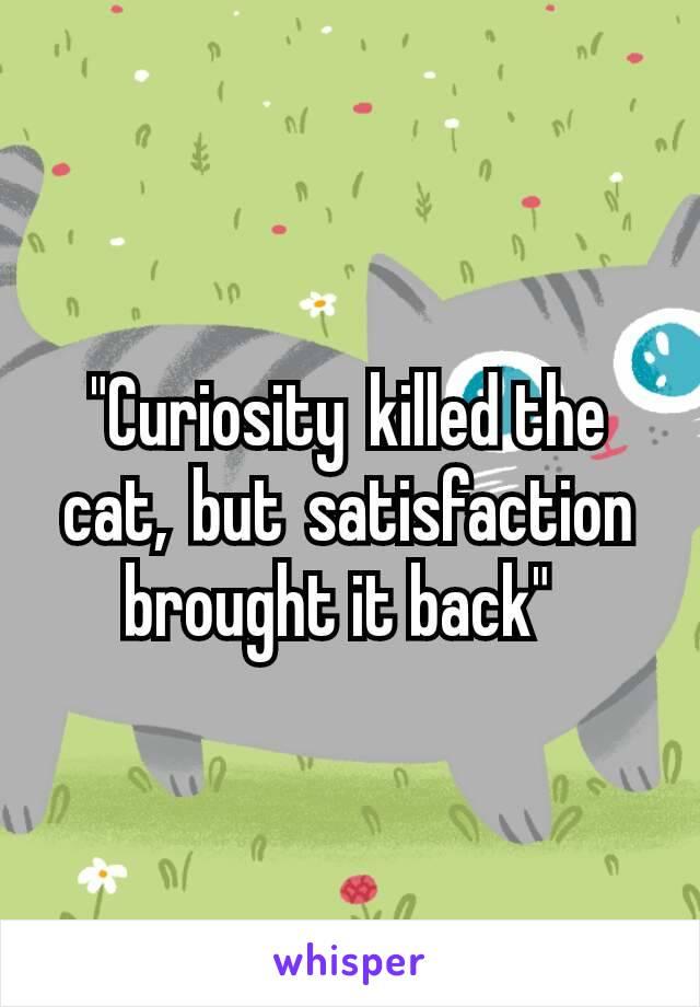 """Curiositykilled the cat,butsatisfaction brought it back"""