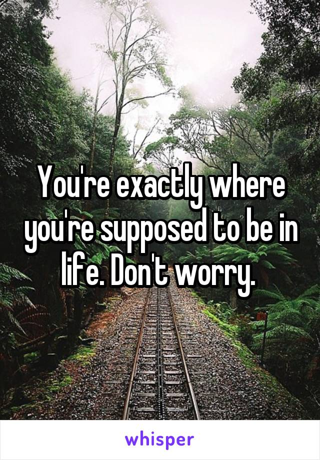 You're exactly where you're supposed to be in life. Don't worry.