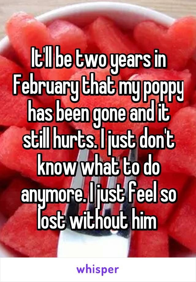 It'll be two years in February that my poppy has been gone and it still hurts. I just don't know what to do anymore. I just feel so lost without him