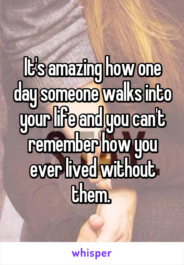 It's amazing how one day someone walks into your life and you can't remember how you ever lived without them.