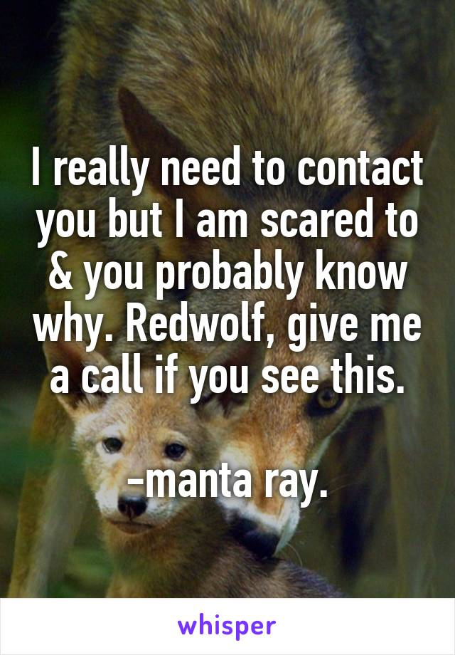 I really need to contact you but I am scared to & you probably know why. Redwolf, give me a call if you see this.  -manta ray.