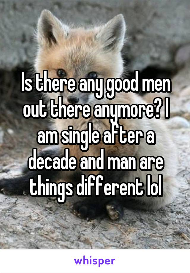 Is there any good men out there anymore? I am single after a decade and man are things different lol