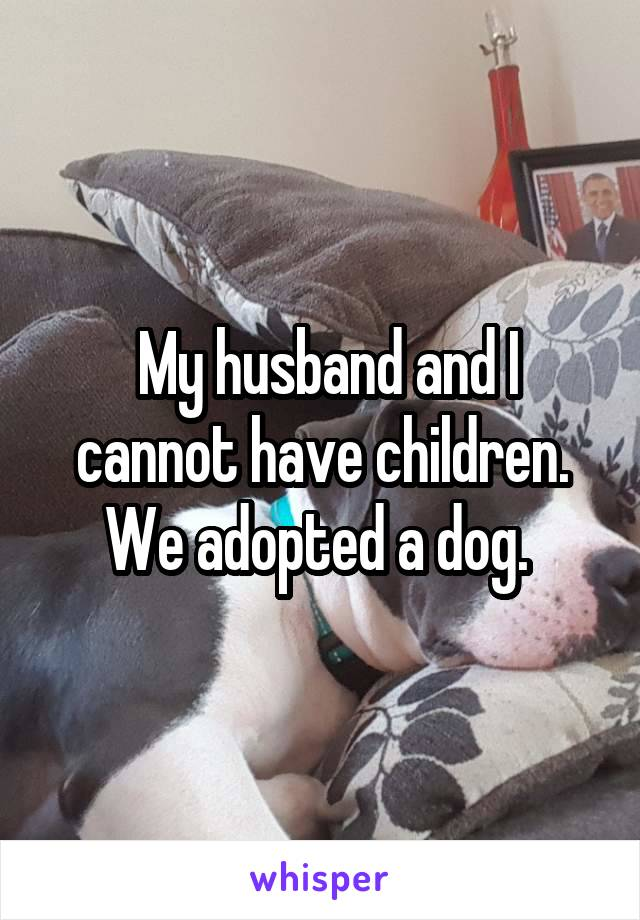 My husband and I cannot have children. We adopted a dog.
