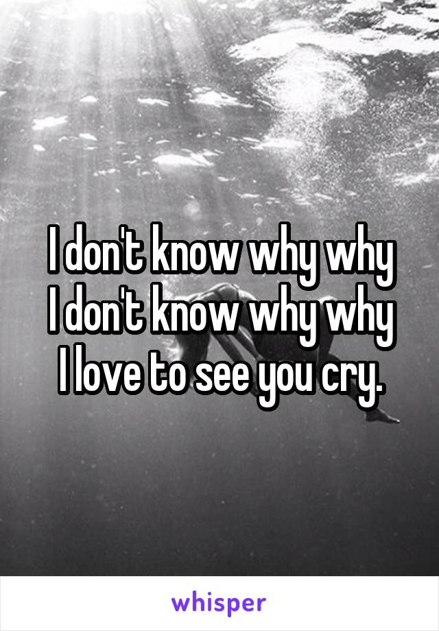 I don't know why why I don't know why why I love to see you cry.