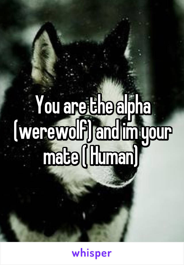 You are the alpha (werewolf) and im your mate ( Human)
