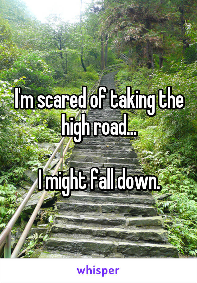 I'm scared of taking the high road...  I might fall down.