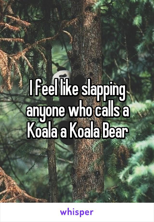 I feel like slapping anyone who calls a Koala a Koala Bear