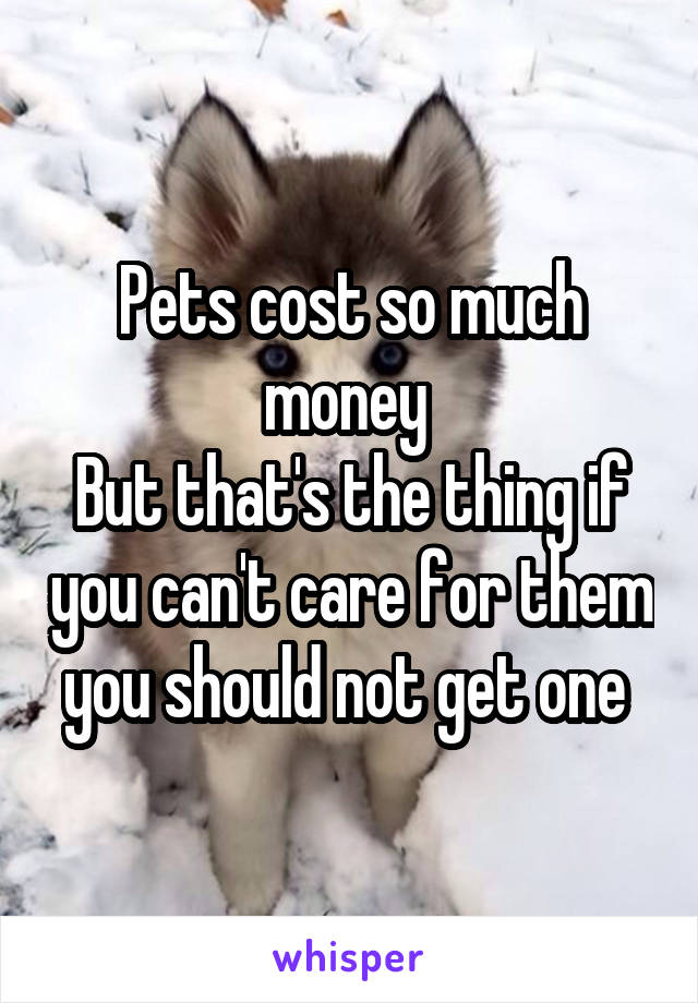 Pets cost so much money  But that's the thing if you can't care for them you should not get one