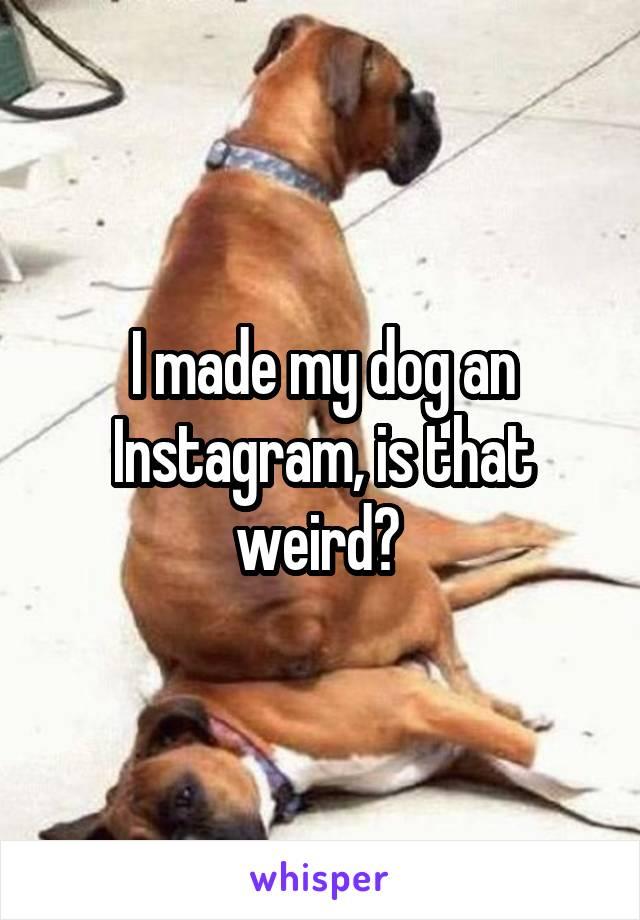 I made my dog an Instagram, is that weird?