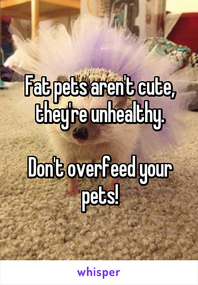 Fat pets aren't cute, they're unhealthy.  Don't overfeed your pets!