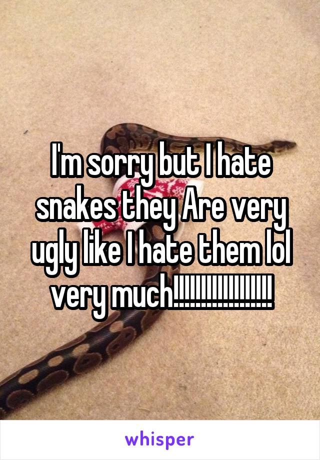 I'm sorry but I hate snakes they Are very ugly like I hate them lol very much!!!!!!!!!!!!!!!!!!