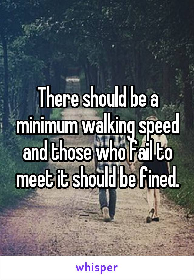 There should be a minimum walking speed and those who fail to meet it should be fined.
