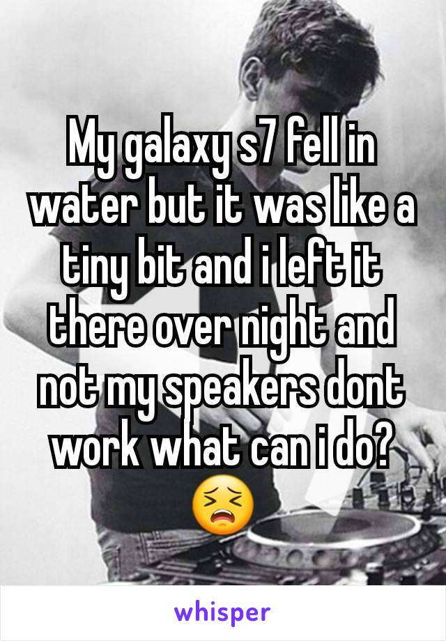 My galaxy s7 fell in water but it was like a tiny bit and i left it there over night and not my speakers dont work what can i do? 😣