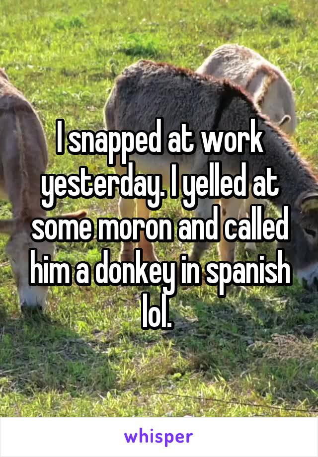 I snapped at work yesterday. I yelled at some moron and called him a donkey in spanish lol.