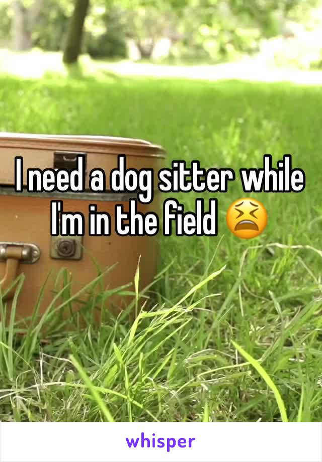 I need a dog sitter while I'm in the field 😫