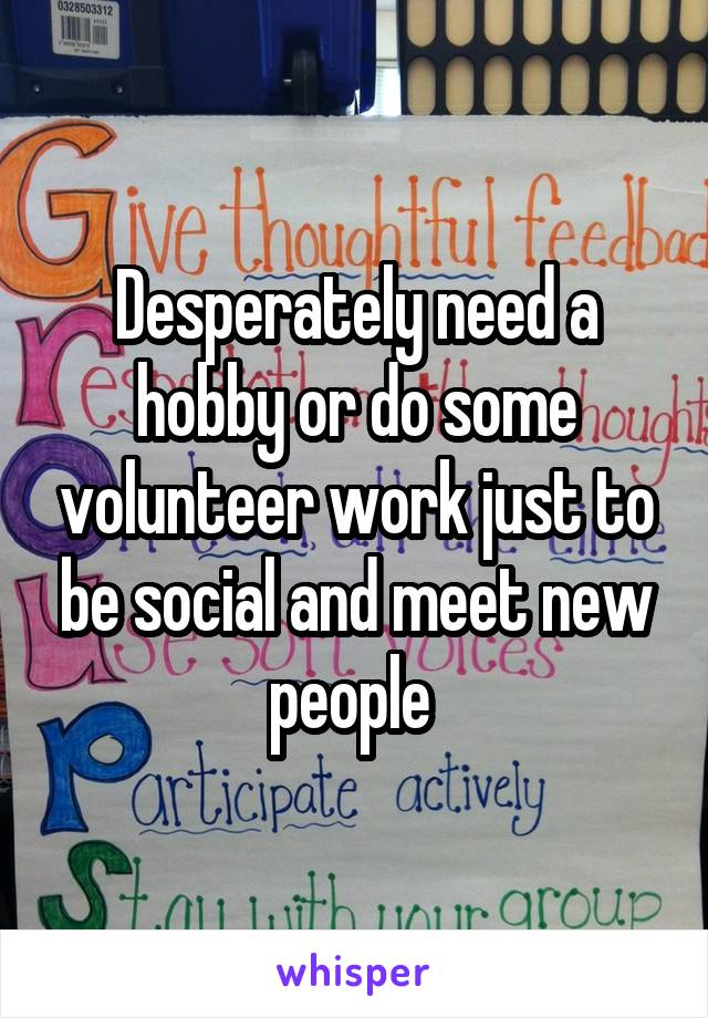 Desperately need a hobby or do some volunteer work just to be social and meet new people