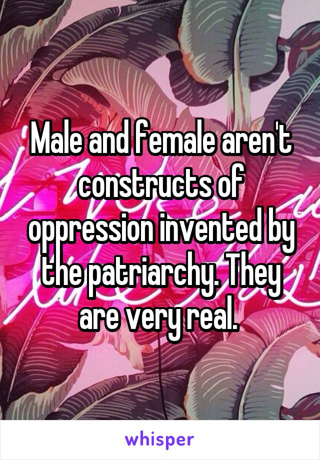 Male and female aren't constructs of oppression invented by the patriarchy. They are very real.