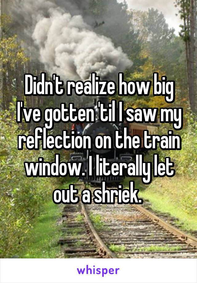 Didn't realize how big I've gotten 'til I saw my reflection on the train window. I literally let out a shriek.