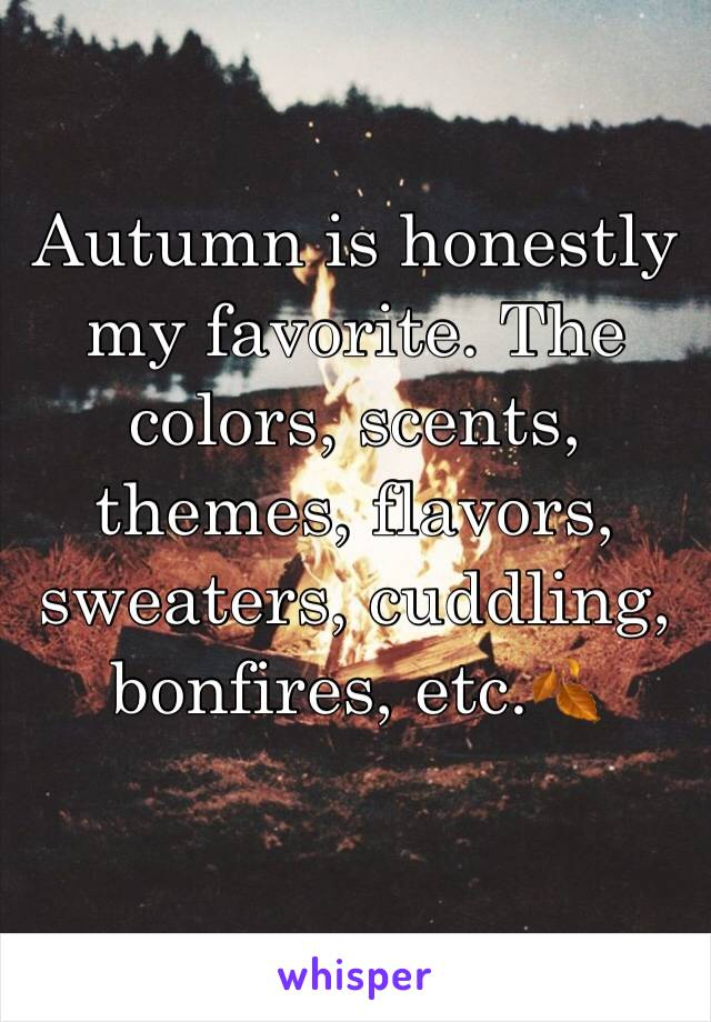 Autumn is honestly my favorite. The colors, scents, themes, flavors, sweaters, cuddling, bonfires, etc.🍂
