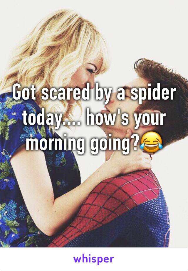 Got scared by a spider today.... how's your morning going?😂