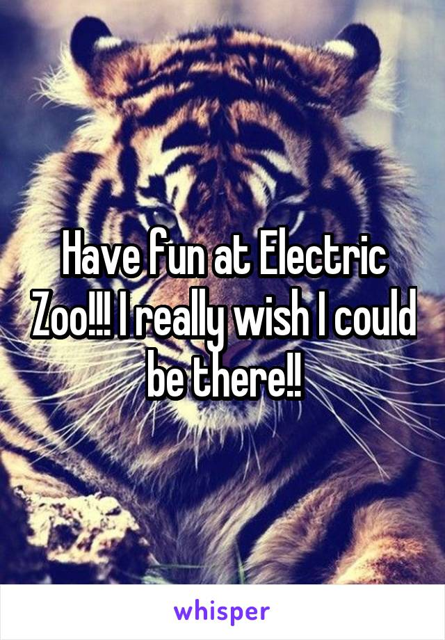 Have fun at Electric Zoo!!! I really wish I could be there!!
