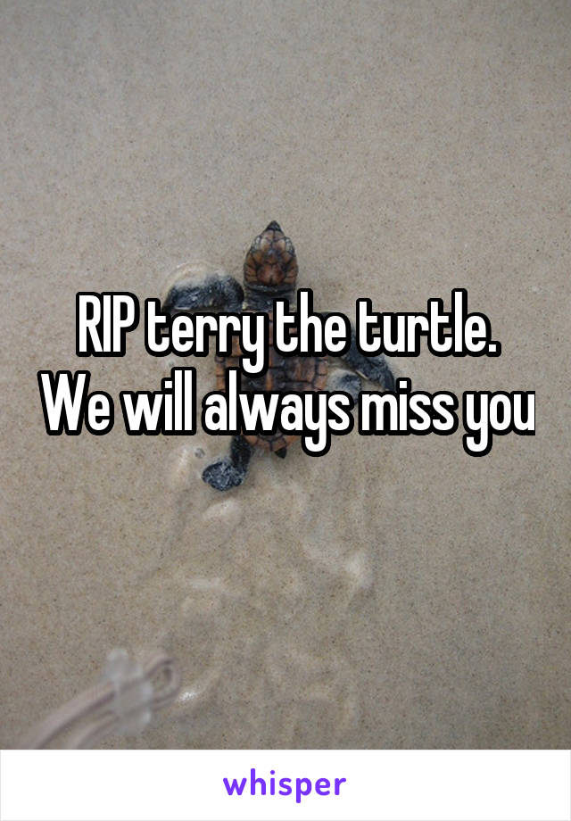 RIP terry the turtle. We will always miss you