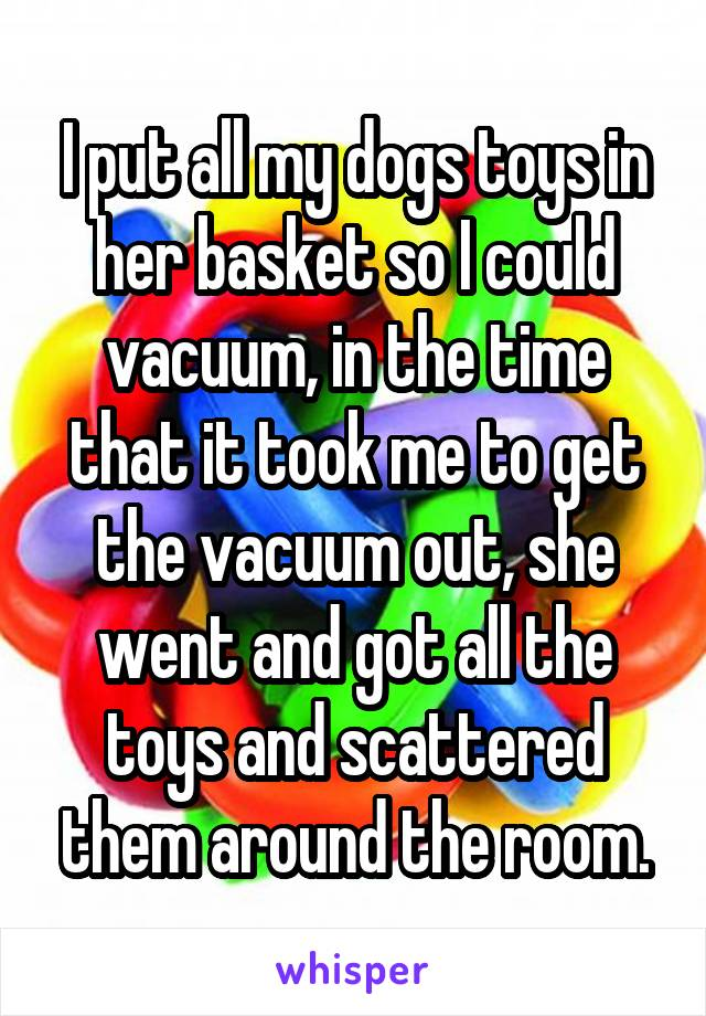 I put all my dogs toys in her basket so I could vacuum, in the time that it took me to get the vacuum out, she went and got all the toys and scattered them around the room.