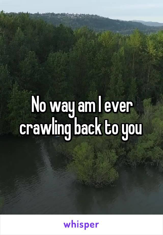 No way am I ever crawling back to you