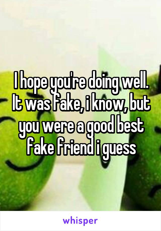 I hope you're doing well. It was fake, i know, but you were a good best fake friend i guess
